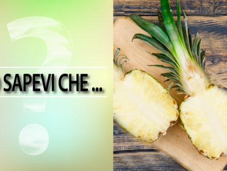 Gambo-d'ananas